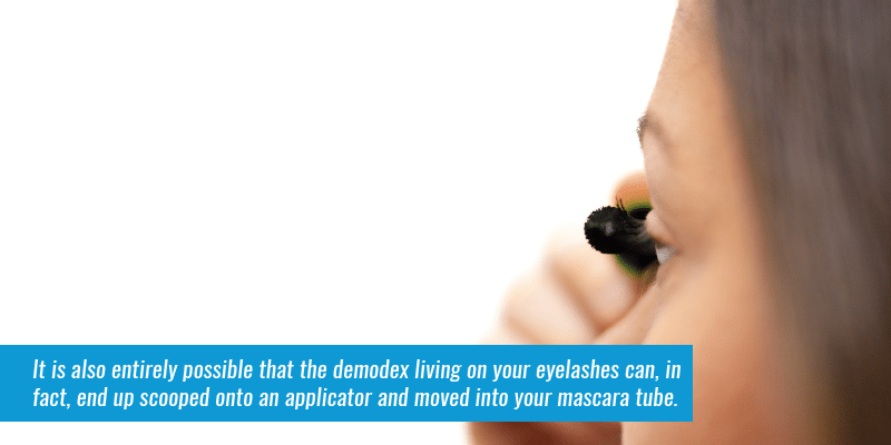 It is also entirely possible that the demodex living on your eyelashes can, in fact, end up scooped onto an applicator and moved into your mascara tube.