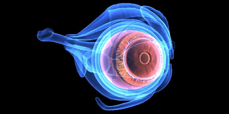 Tips for Preventative Eye Care